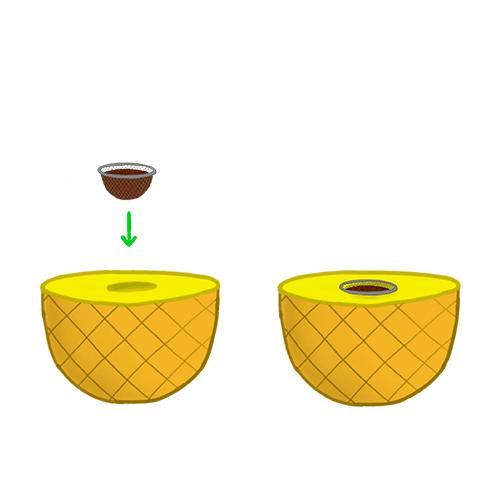Fruchtkopf mit Ananas